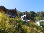 Vertical Cottage