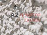 A2 Questione di Facciata