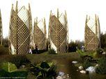 Bamboo Haiti V1