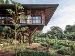 Treehouse C