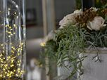 Concept store - wedding boutique