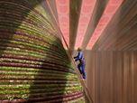 Dutch Pavilion at Expo 2020 Dubai
