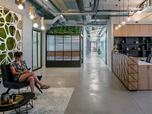 Collplant offices