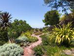 Divine Nature Landscape Design | Hillside Restoration & Slice of Heaven | Los Gatos, California