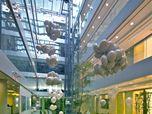 HOK London Offices