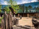 The Antwerp Zoo