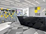 TRIBAL DDB OFFICES
