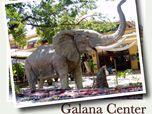 Galana center
