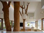 Garden Tree House