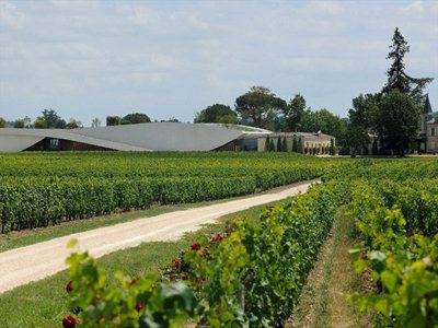 Chateau Cheval Blanc: a concrete sail lying over the vineyards