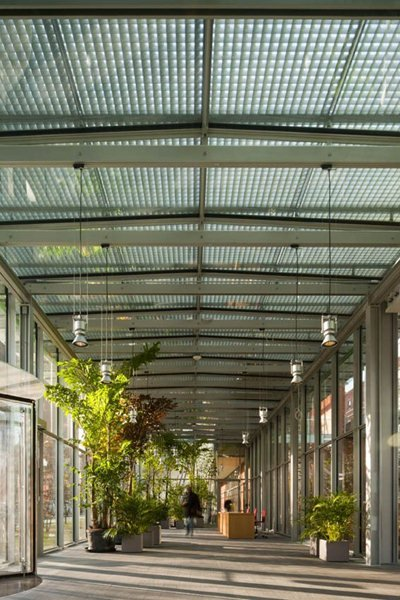 Renzo Piano has designed the extension to another great museum