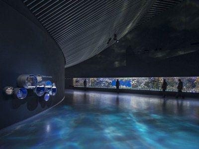 The largest Aquarium in Europe opens today in Copenhagen