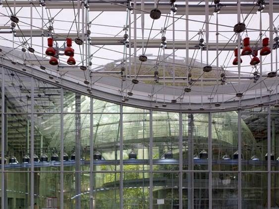 California Academy of Sciences RPBW - Renzo Piano Building Workshop