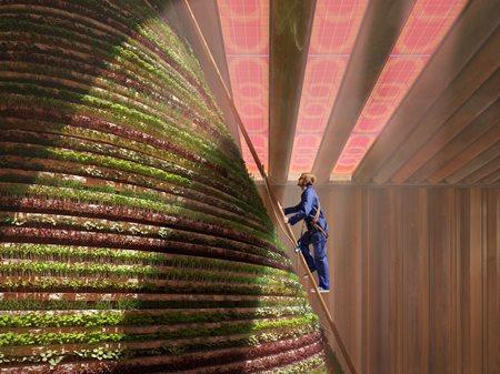 Dutch Pavilion at Expo 2020 Dubai V8 Architects