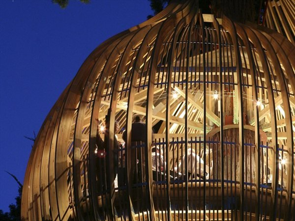 Yellow Treehouse Restaurant Pacific Environments NZ Ltd : Architects