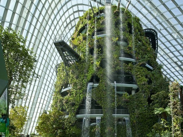 Cooled Conservatories at Gardens by the Bay WilkinsonEyre